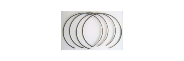 6DCT450 MPS20 Snap Rings